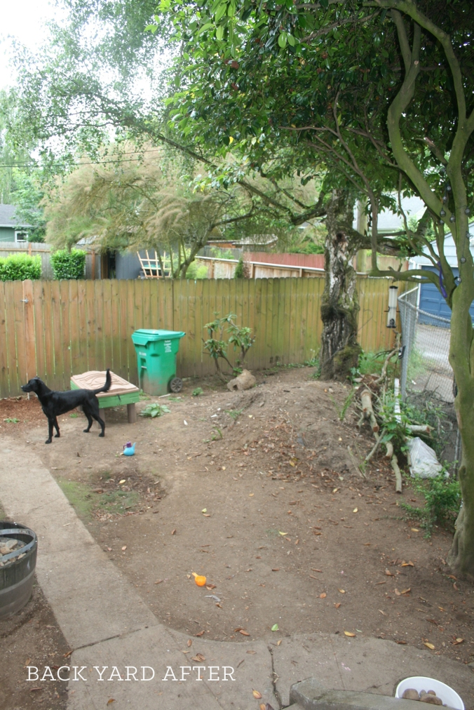 Backyard After